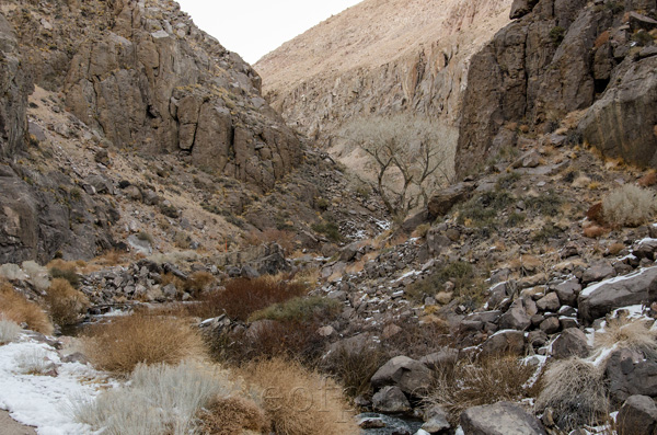 Ownes River Gorge, California